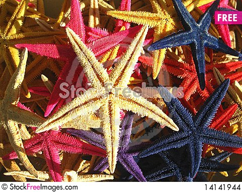 Free Starfish On A Harbour Stock Images - 14141944