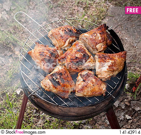 Free Appetizer Chicken Meat Stock Images - 14143914