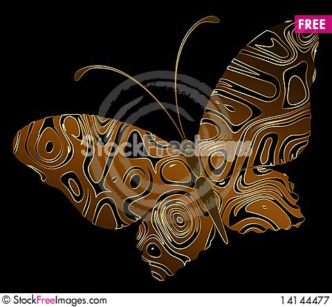 Free Tropical Butterfly Royalty Free Stock Photography - 14144477
