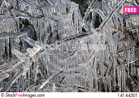 Free Icicles Stock Image - 14144501