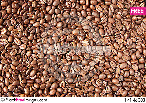 Free Coffee Beans Stock Photos - 14146083
