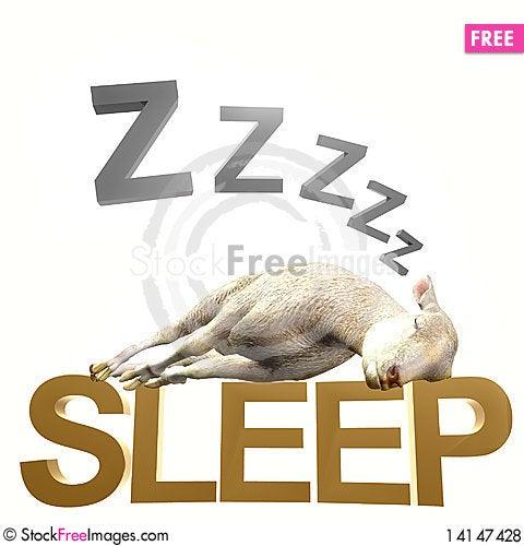 Free Sleeping Sheep Or Lamb Royalty Free Stock Photos - 14147428