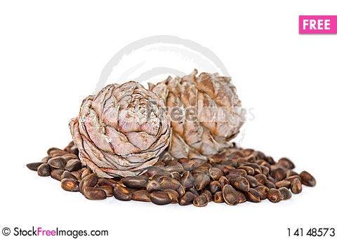 Free Cedar Nutlets Stock Photos - 14148573