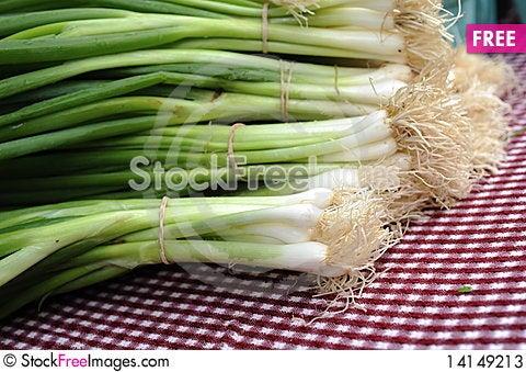 Free Onion Stock Photos - 14149213