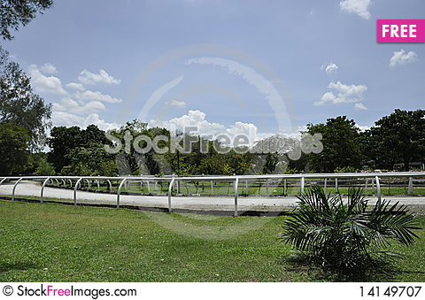 Free Horse Cart Track Royalty Free Stock Photography - 14149707