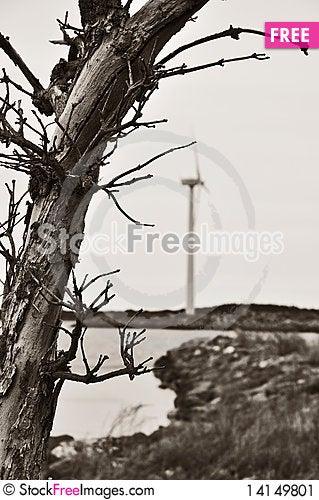 Free Wind Turbine Stock Image - 14149801