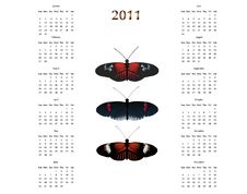 Free Postman Butterfly 2011 Calendar Royalty Free Stock Photos - 14141878