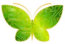 Free Tropical Butterfly Stock Photos - 14141953