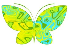 Free Tropical Butterfly Royalty Free Stock Photography - 14144807
