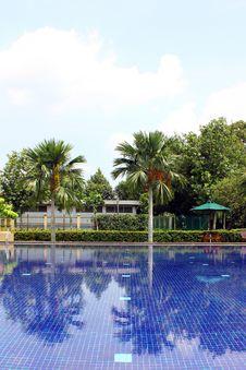 Free Swimming Pool Stock Photos - 14148113