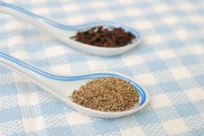 Spices And Seasoning As Food Ingredients Stock Photos