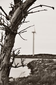 Free Wind Turbine Stock Image - 14149801