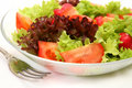 Free Salad From Vegetables Royalty Free Stock Photos - 14154818