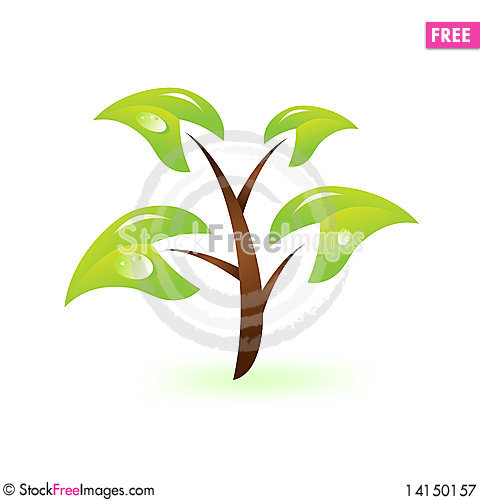 Free Green Branch Royalty Free Stock Photography - 14150157