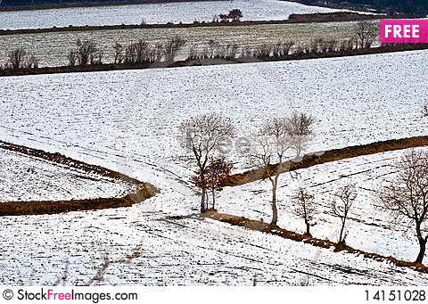 Free Landscape At Winter Royalty Free Stock Photos - 14151028