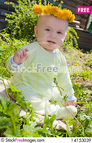 Free The Baby Of 7-8 Months Sits On A Grass Royalty Free Stock Images - 14153039