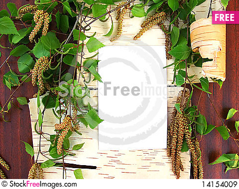 Free Birch Still Life Royalty Free Stock Images - 14154009