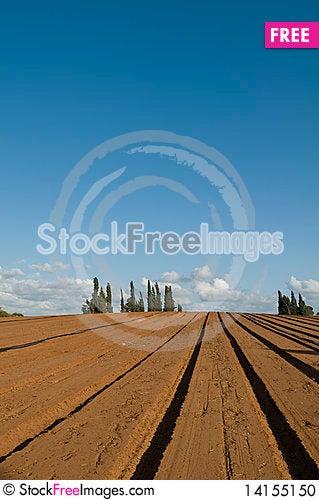 Free Plowed Field Stock Photo - 14155150