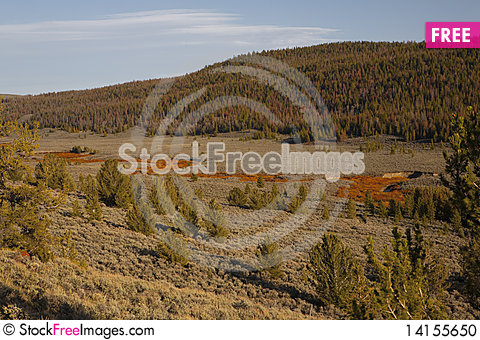 Free River In Wyoming Stock Photo - 14155650