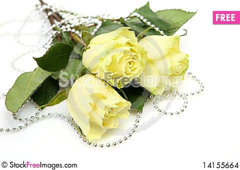 Free Yellow Roses Stock Images - 14155664