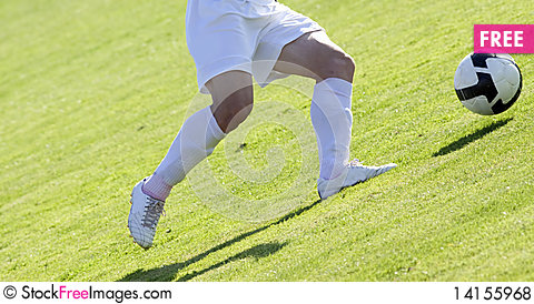 Free Soccer Royalty Free Stock Photos - 14155968
