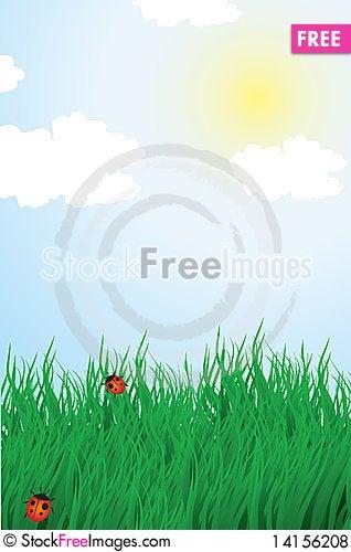 Free Summer Landscape Royalty Free Stock Photos - 14156208