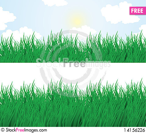 Free Summer Grass Royalty Free Stock Image - 14156226