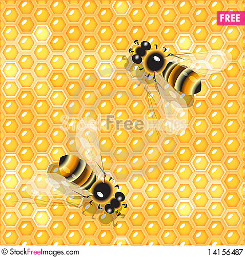 Free Bees And Honey Royalty Free Stock Photography - 14156487