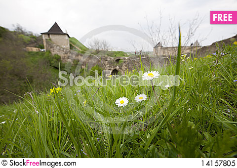 Free Flowers Near The Castle Royalty Free Stock Photo - 14157805