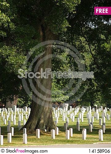 Free Arlington National Cemetery Royalty Free Stock Image - 14158906