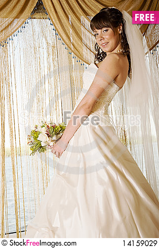 Free Bride In Front Of A Window Royalty Free Stock Images - 14159029