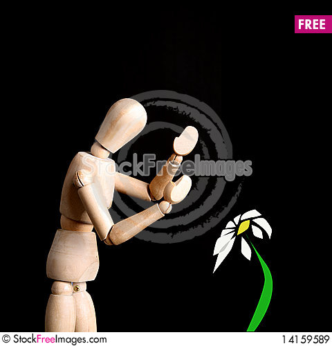 Free Dummy Royalty Free Stock Images - 14159589