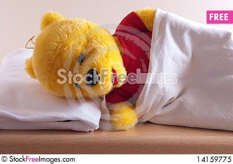 Free Sleeping Bear Royalty Free Stock Photo - 14159775