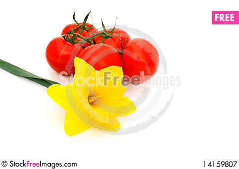 Free Yellow Daffodil And Tomatoes Royalty Free Stock Photography - 14159807