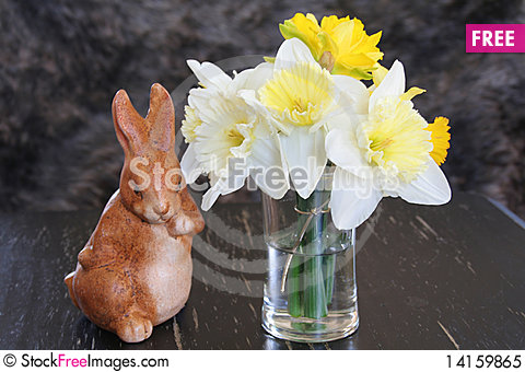 Free Spring Daffodils Royalty Free Stock Photo - 14159865