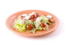 Free Salad Royalty Free Stock Photos - 14150568