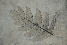 Concrete Pattern Royalty Free Stock Photo