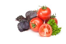 Tomato With Parsley And Basil Royalty Free Stock Image