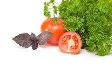 Parsley, Basil And Tomato