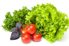 Tomato With Parsley And Salad