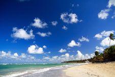 Free Caribbean Coastline Royalty Free Stock Photos - 14154918