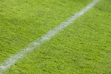 Free Football Grass Field Royalty Free Stock Images - 14155949