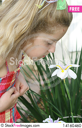 Free Child Smelling Flower Stock Photo - 14160460