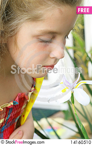 Free Little Girl Smelling A Flower Stock Photo - 14160510