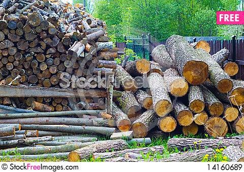 Free Kindling Wood Royalty Free Stock Images - 14160689