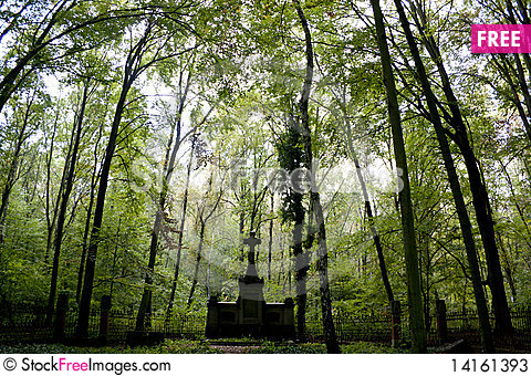 Free Old Cemetery In A Forest Stock Photos - 14161393