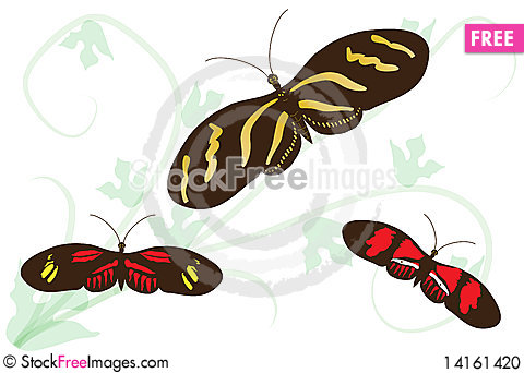 Free Passion Flower Butterflies (heliconius) Stock Photo - 14161420