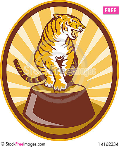 Free Angry Tiger Sitting On Top Of Plinth Stock Images - 14162334