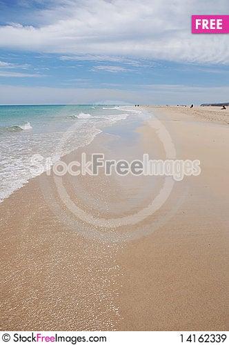 Free Fuerteventura Beach Royalty Free Stock Images - 14162339