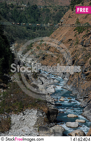 Free Mules Crossing A Suspended Bridge Stock Images - 14162404